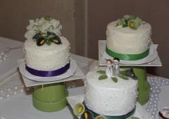 C + R Wedding Snaps-463